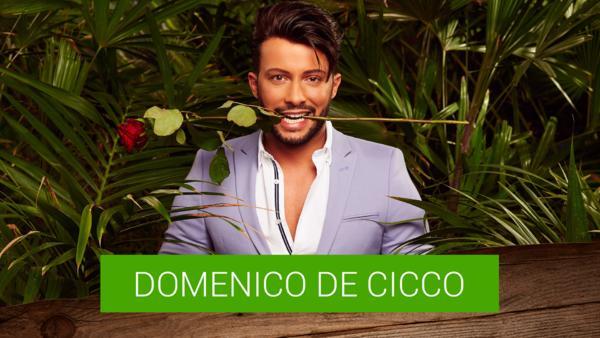 Domenico de Cicco