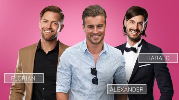Florian, Alexander & Harald