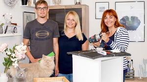 Tipps zur Haltung von Wohnungskatzen