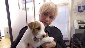 Polizistin Nadine kümmert sich um den ausgesetzten Hund