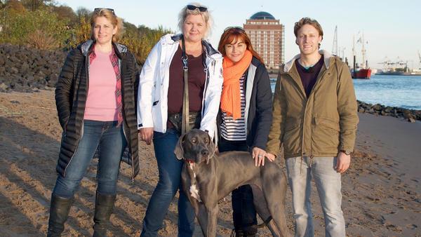 Thema u.a.: Dog Sharing