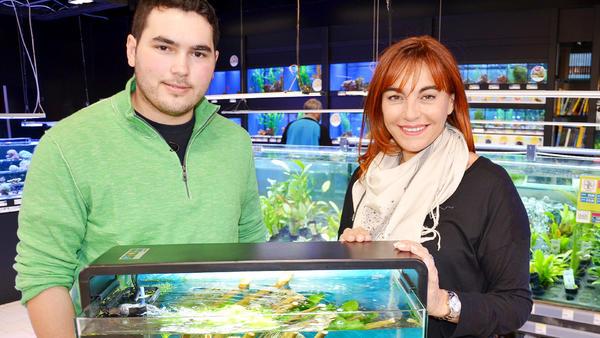 Thema heute u.a.: Mein erstes Aquarium