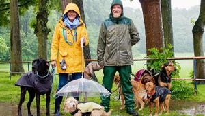 Heute u.a.: Hundebeschäftigung an Regentagen