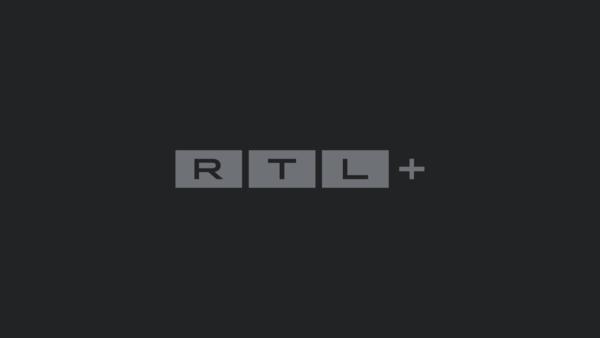 Ein Vierbeiner im Brautmodenladen