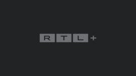 die pferdeprofis ganze folgen
