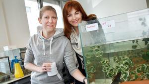 Axolotl - Wunder der Natur!